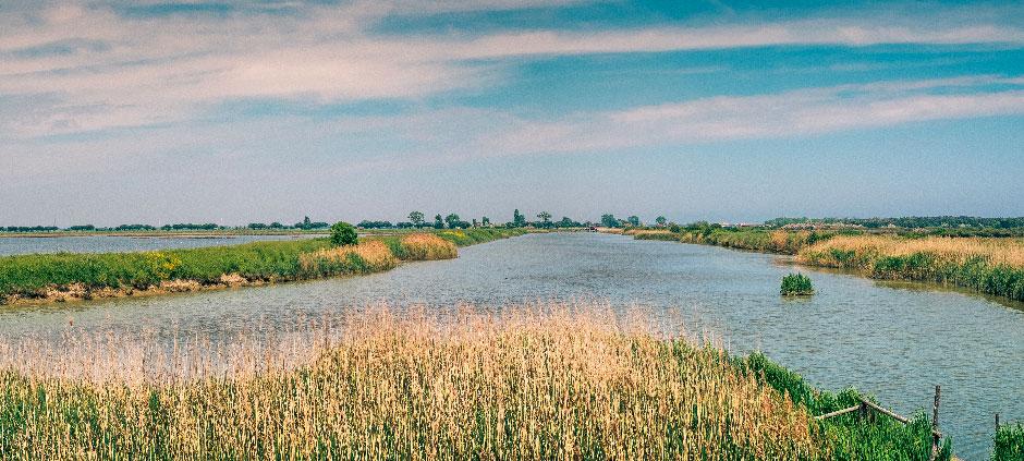 Parco del Delta